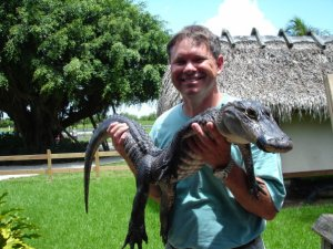 Jeff alligator